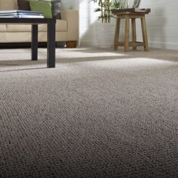 01-alfombra-cubrepiso